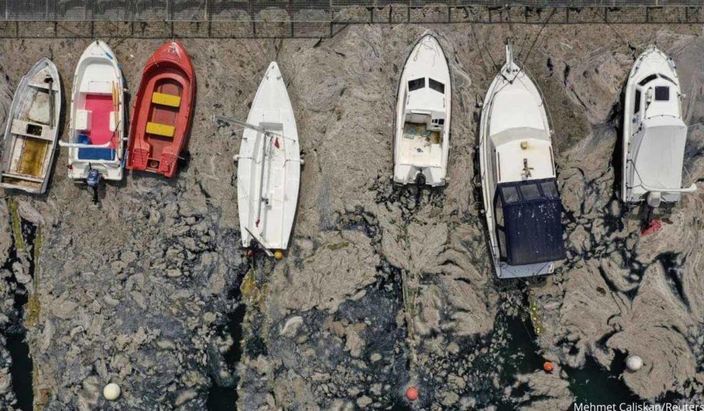 """Sea Snot"": An Environmental Catastrophe in Turkey"